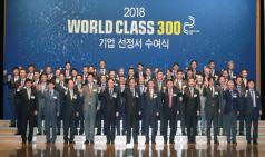 '월드클래스 300' 중소·중견기업 41곳 신규 선정